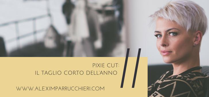 pixie-cut-alexim